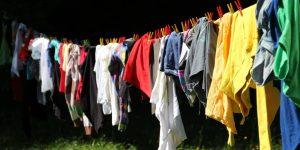 eliminar-garrapatas-de-ropa